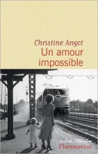 Christine Angot - Un amour impossible - Flammarion